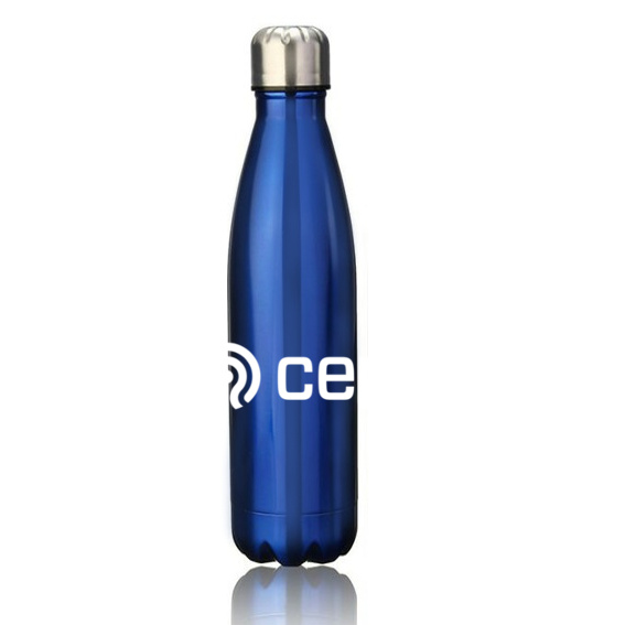 700ml blue metal water bottle with company logo