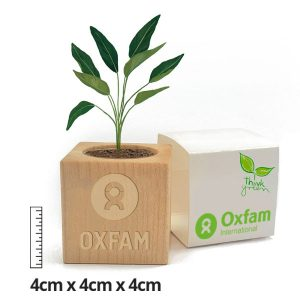 Eco-friendly mini promotional plant cube