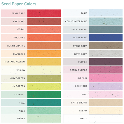Seed Paper Wristband Colour Options
