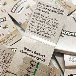 eco giveaways for Ben and Jerry's branded seed stixs