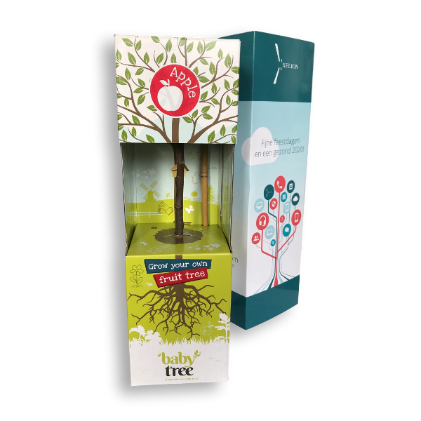 Promotional Baby Fruit Trees