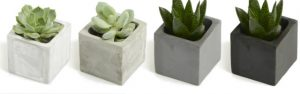 Branded clay plant pots in 4 different shades